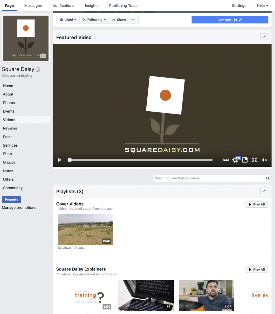 Square Daisy Featured Video